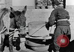 Image of bean cakes China, 1938, second 55 stock footage video 65675050390
