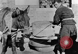 Image of bean cakes China, 1938, second 57 stock footage video 65675050390