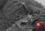 Image of train collision Austria, 1951, second 11 stock footage video 65675050620