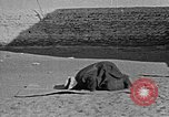 Image of Muslims performing namaz (Salat) Delhi India, 1936, second 37 stock footage video 65675050628