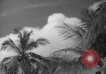 Image of shelling and drying of coconut Caracas Venezuela, 1940, second 35 stock footage video 65675050637