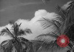 Image of shelling and drying of coconut Caracas Venezuela, 1940, second 37 stock footage video 65675050637
