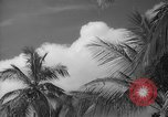 Image of shelling and drying of coconut Caracas Venezuela, 1940, second 38 stock footage video 65675050637