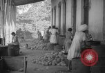 Image of shelling and drying of coconut Caracas Venezuela, 1940, second 42 stock footage video 65675050637