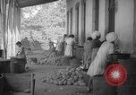 Image of shelling and drying of coconut Caracas Venezuela, 1940, second 43 stock footage video 65675050637