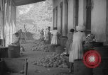Image of shelling and drying of coconut Caracas Venezuela, 1940, second 49 stock footage video 65675050637