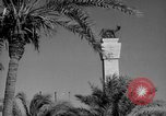 Image of ruins Libya, 1950, second 48 stock footage video 65675050653