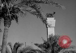 Image of ruins Libya, 1950, second 49 stock footage video 65675050653
