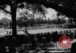 Image of United States Open Championship Massachusetts United States USA, 1963, second 6 stock footage video 65675050675