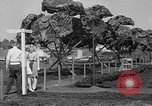 Image of Boeing aircraft plant Seattle Washington USA, 1945, second 36 stock footage video 65675050684