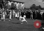Image of golf tournament United States USA, 1945, second 4 stock footage video 65675050711