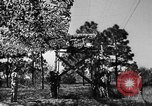 Image of camouflaged net United States USA, 1941, second 44 stock footage video 65675050731