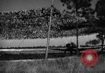 Image of camouflaged net United States USA, 1941, second 55 stock footage video 65675050731