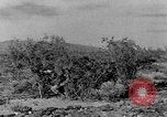 Image of camouflage United States USA, 1942, second 56 stock footage video 65675050739