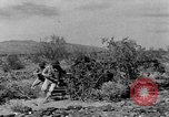 Image of camouflage United States USA, 1942, second 57 stock footage video 65675050739
