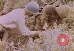 Image of American infantry searching hideouts on Saipan for Japanese soldiers Saipan Northern Mariana Islands, 1944, second 53 stock footage video 65675050872