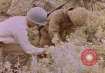Image of American infantry searching hideouts on Saipan for Japanese soldiers Saipan Northern Mariana Islands, 1944, second 54 stock footage video 65675050872