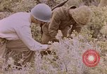Image of American infantry searching hideouts on Saipan for Japanese soldiers Saipan Northern Mariana Islands, 1944, second 55 stock footage video 65675050872
