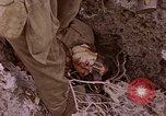 Image of American infantry searching hideouts on Saipan for Japanese soldiers Saipan Northern Mariana Islands, 1944, second 59 stock footage video 65675050872