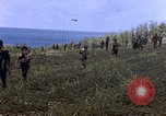 Image of Japanese prisoners and civilians Saipan Northern Mariana Islands, 1944, second 15 stock footage video 65675050876