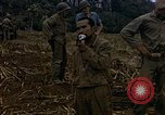 Image of Japanese prisoners and civilians Saipan Northern Mariana Islands, 1944, second 55 stock footage video 65675050876
