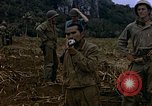 Image of Japanese prisoners and civilians Saipan Northern Mariana Islands, 1944, second 59 stock footage video 65675050876