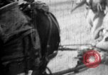 Image of Japanese soldiers Burma, 1943, second 14 stock footage video 65675050900