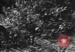 Image of Japanese soldiers Burma, 1943, second 26 stock footage video 65675050907
