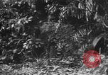 Image of Japanese soldiers Burma, 1943, second 27 stock footage video 65675050907
