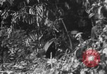 Image of Japanese soldiers Burma, 1943, second 28 stock footage video 65675050907