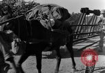 Image of 475th Infantry Burma, 1944, second 29 stock footage video 65675050912