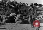 Image of 475th Infantry Burma, 1944, second 31 stock footage video 65675050912