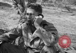 Image of Allied forces Sicily Italy, 1948, second 37 stock footage video 65675050918