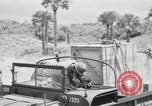 Image of DUKWs United States USA, 1943, second 16 stock footage video 65675050920