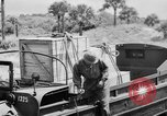 Image of DUKWs United States USA, 1943, second 27 stock footage video 65675050920