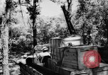 Image of DUKWs United States USA, 1943, second 53 stock footage video 65675050923