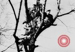 Image of Celebration parade in Vienna during Anschluss Vienna Austria, 1938, second 25 stock footage video 65675050928