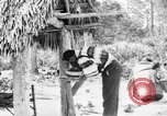 Image of Seminole Native American Indians cook food Florida United States USA, 1919, second 48 stock footage video 65675050982