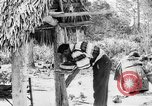 Image of Seminole Native American Indians cook food Florida United States USA, 1919, second 49 stock footage video 65675050982