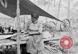 Image of Seminole Native American Indians cook food Florida United States USA, 1919, second 61 stock footage video 65675050982