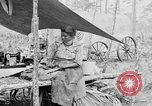 Image of Seminole Native American Indians cook food Florida United States USA, 1919, second 62 stock footage video 65675050982