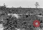Image of Reserve Officers' Training Corps Columbia South Carolina USA, 1920, second 32 stock footage video 65675050986