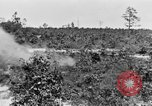 Image of Reserve Officers' Training Corps Columbia South Carolina USA, 1920, second 37 stock footage video 65675050986