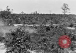 Image of Reserve Officers' Training Corps Columbia South Carolina USA, 1920, second 38 stock footage video 65675050986