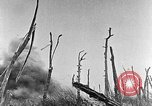 Image of Battle of the Somme England United Kingdom, 1927, second 6 stock footage video 65675051112