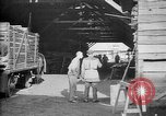 Image of Aircraft being constructed at  German Albatros factory Berlin Germany, 1917, second 41 stock footage video 65675051130