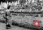 Image of Saint Mihiel Offensive Saint Mihiel France, 1918, second 41 stock footage video 65675051149