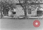 Image of Brackenridge Park San Antonio Texas USA, 1928, second 61 stock footage video 65675051160