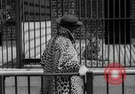 Image of fur fashions New York City USA, 1935, second 13 stock footage video 65675051172