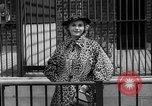 Image of fur fashions New York City USA, 1935, second 16 stock footage video 65675051172